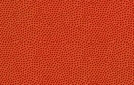 LNP e Lega Basket Femminile 2017-18: ecco i calendari di A2 Girone Est, A2 Girone Ovest, A1 femminile,Serie B Girone A, Serie B Girone B, Serie B Girone C, Serie B Girone D