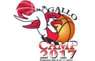 NBA 2017: il 'Gallo Camp 2017' viene completamente supportato dall'NBA